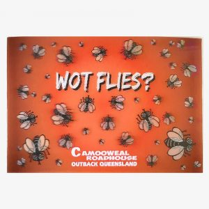 3D Post Card - Flies