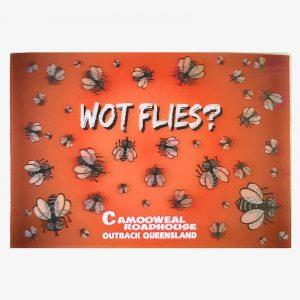 3D Post Card - Flies